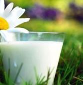 В Україні подорожчає молоко
