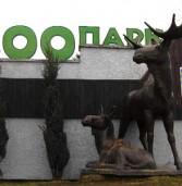 В Україні заборонили пересувні зоопарки та виставки диких тварин