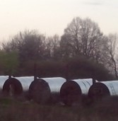 На Дубенщині виявили ще одне незаконне шкідливе виробництво