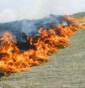 На Рівненщині оголосили найвищий рівень пожежної небезпеки