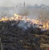 Загоряння трави могло перекинутись на будинки та водонапірну вежу