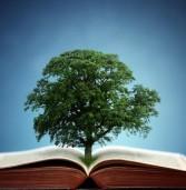 Вперше в Дубні відбудеться «Жива бібліотека»