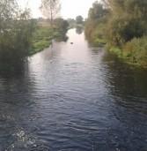 Іква на Дубенщині: Шандори демонтували, та рівень води не знизився