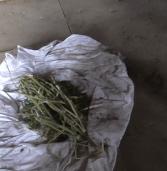 Двадцятирічні молодики незаконно зберігали наркотики і зброю