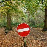 Транспортним засобам заборонено в'їжджати в ліси