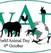 Тварини мають право на існування